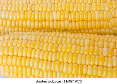 Closeup fresh organic corn background