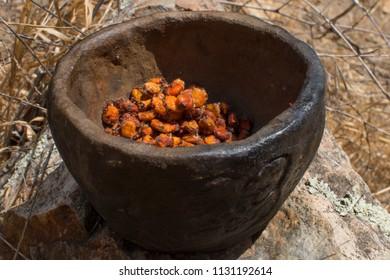 Closeup fresh Rhus integrifolia lemonade berries in primitive clay bowl in natural setting