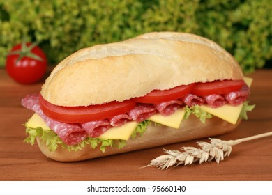 Closeup of a fresh sandwich with salami, cheese and lettuce