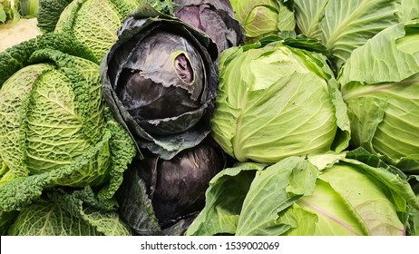 Closeup Fresh Savoy Cabbage Purple Cabbage Stock Photo Edit Now 1539002069