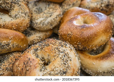 Close-up of freshly baked bagels with seeds on top.