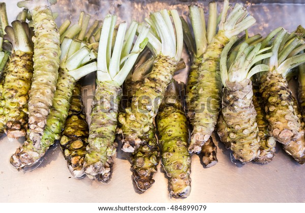 Closeup of freshly harvested Japanese wasabi stems on tray