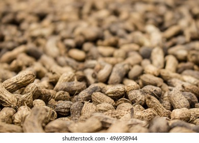 Close-up of freshly harvested peanuts dry in rural Liberia.