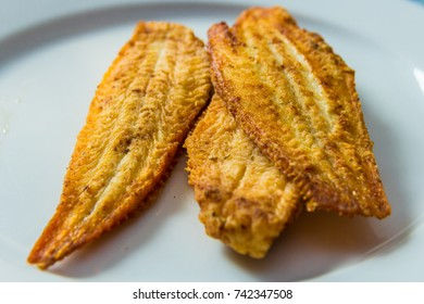 closeup of fried dover sole fish on white plate