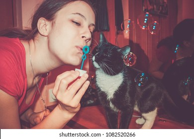 Close-up girl blowing soap bubbles and curious black and white cat interested in them.