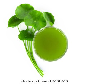 Closeup glass of Gotu kola drink and leaf, Asiatic pennywort, Indian pennywort on white background, herb and medical concept
