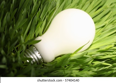 Close-up of a glowing energy saving lightbulb on green grass