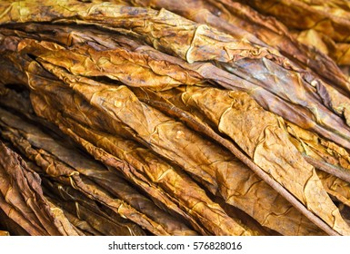 Cigarette Material Images Stock Photos Vectors Shutterstock