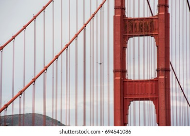 Close-up of the Golden Gate Bridge with a bird