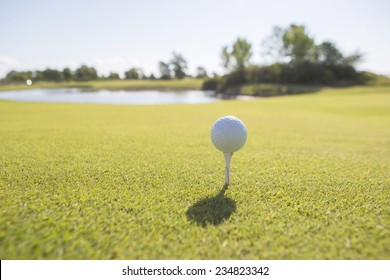 Closeup of a golf ball on a tee with dam behind it.