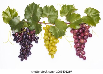 closeup of grapevine set with grapes of different types on the white background