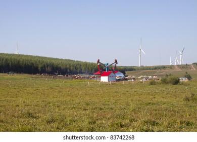 closeup of grassland landscape in chengde SaiHanBa, in China
