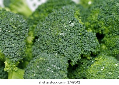 Closeup of green broccoli covered in water droplet