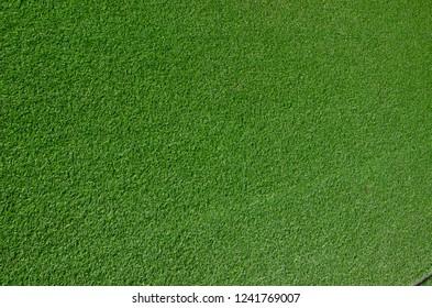 closeup green grass texture background
