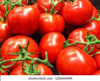 Close-up group of fresh red ripe tomatoes.Organic vegetables tomato in the tray market agriculture farm.Delicious red tomatoes.Can be use as background.
