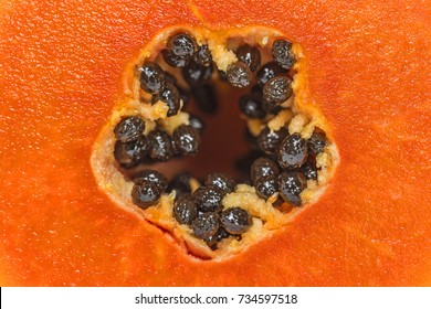 Close-up of haft papayas with black seeds.