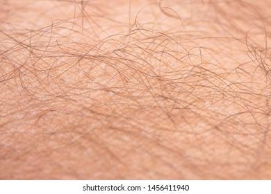Closeup to hair arm of man