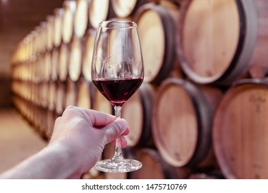 Closeup hand with glass of red wine on background wooden oak barrels stacked in straight rows in order, old cellar of winery, vault. Concept professional degustation, winelover, sommelier travel