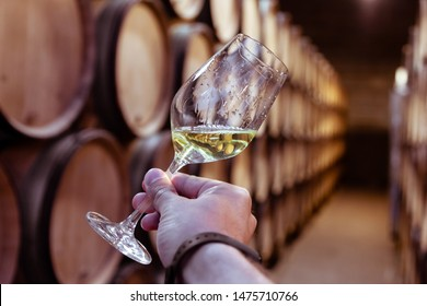 Closeup hand with glass of white wine on background wooden oak barrels stacked in straight rows in order, old cellar of winery, vault. Concept professional degustation, winelover, sommelier travel