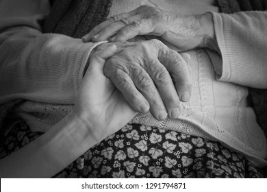 closeup of a hand holding an older wrinkled hand, black and white