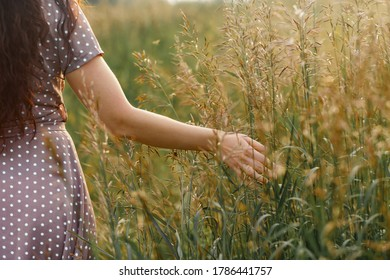 Close-Up Of Hand On Grass In Field. A woman hand feels to the meadows