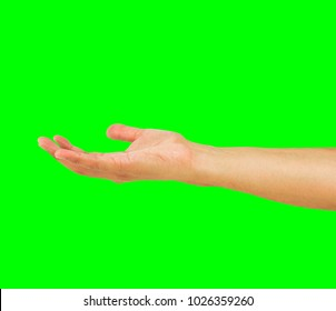closeup of hand presenting with copy space isolated cutout on green background with chroma key