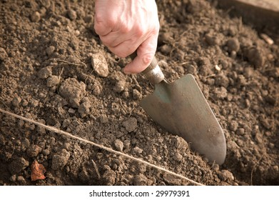A close-up of a hand with a trowel cutting into the earth