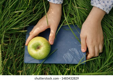 Closeup hands holding an apple and a book. Education concept.