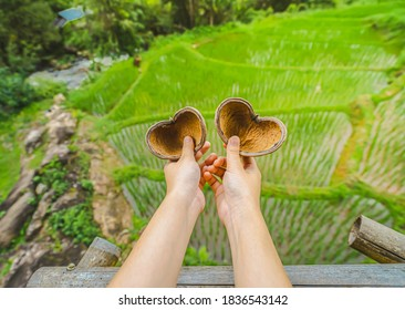 Close-up of hands holding two heart-shaped dried pine cones protruding from a wooden balcony. Blurred background of fields rice with different curves and waterlogging in basins in the rainy season.