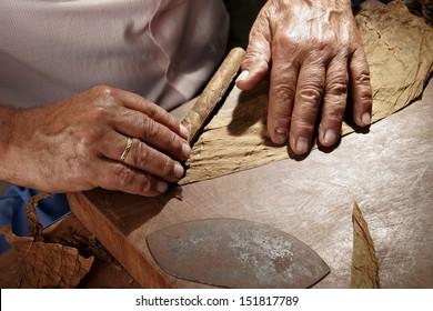 closeup of hands making cigar