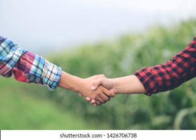 closeup hands two farmer shaking hands.