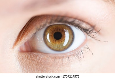 Close-up of a hazel colored eye
