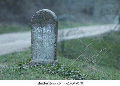 A closeup of a headstone in nature