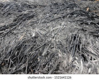 Close-up of heap black rice straw charcoal in the rice field