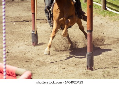 Closeup of the hooves from a horse while in galop on an race track