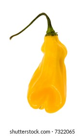 close-up of a hot madame jeanette pepper from Suriname isolated on a white background