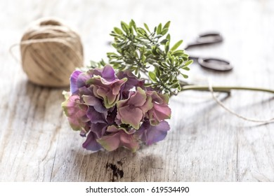 Closeup of hyacinth flower on wooden table