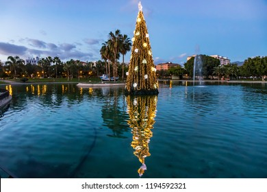 Close-up illuminated decorated New Year tree reflected in the water. Huelin Park, Malaga city, Andalusia, Spain