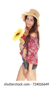 A closeup image of a beautiful young woman in shorts and a colorfulblouse, holding a yellow sunflower, isolated for white background
