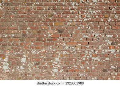 Close-up image of a brick wall