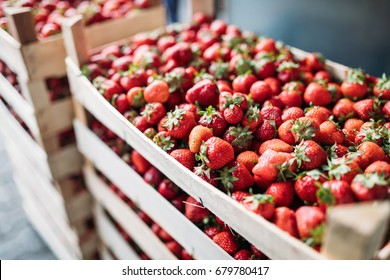 Close-up image of fresh strawberries in crates
