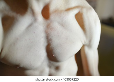 Closeup image of man body and fitness