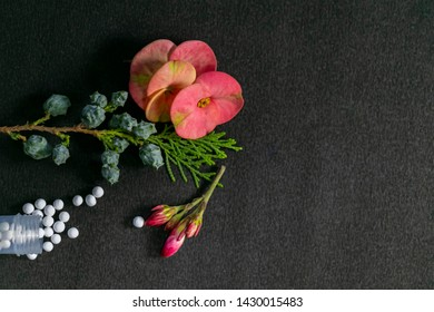 Closeup image of scattered homeopathic medicine consisting of the pills and a bottle with flower and green shrubs on black background