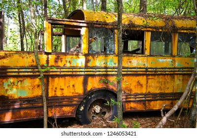 Close-up Image of the Side of an Old Scrap School Bus in a Junk Yard