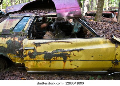 Close-up Image of the side of an Old Scrap Car in a Junk Yard