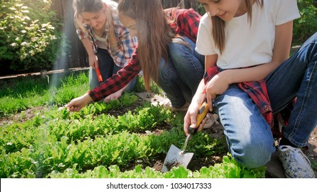 Closeup image of two teenage girls with young mother weeding garden bed