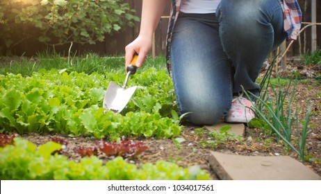 Closeup image of young woman with spade working in garden
