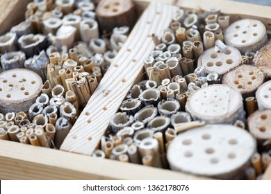 Closeup of an Insect hotel made of reed and drilled holes in wood of different diameter to suit all kind of insects