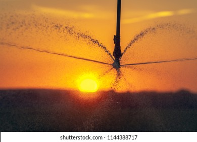 Close-up of a irrigation system for farming during the sunset, to promote the growth of plants at great and prolonged heat. Concept: agriculture or water supply