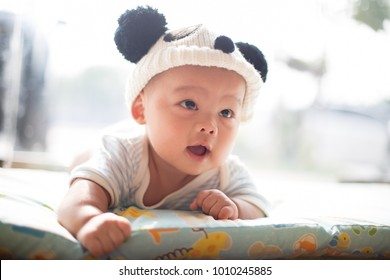 a close-up isolated asian baby in panda hat photo